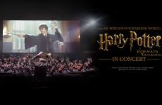 Harry Potter i Komnata Tajemnic in Concert: magia i muzyka na drugim roku w Hogwarcie!