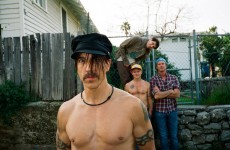 Red Hot Chili Peppers na żywo w kinie